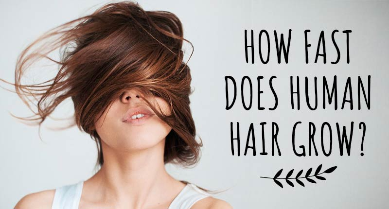 How Fast Does Human Hair Grow? | The Average Number