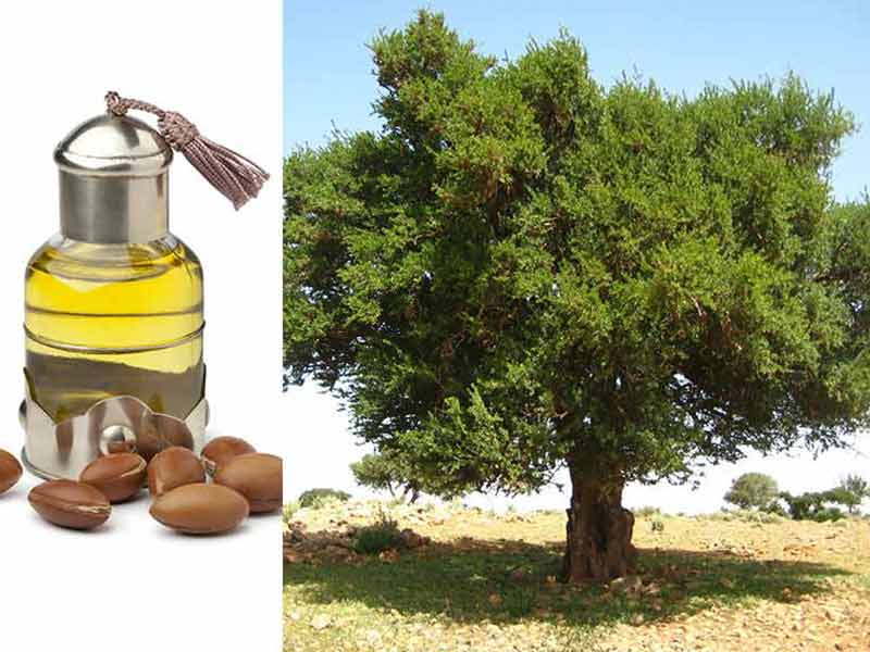 Best Argan Oil For Hair - How To Be More Effective?