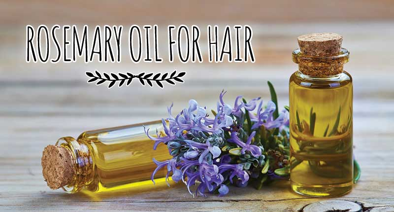 Cracking The Use Of Rosemary Oil For Hair | Lewigs