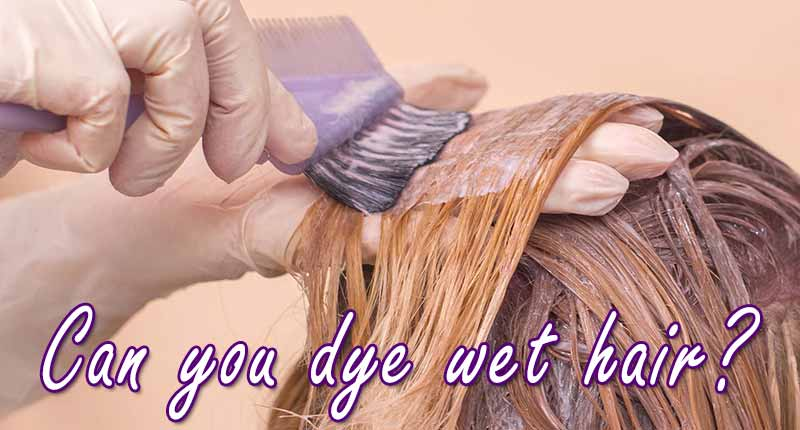 Can You Dye Wet Hair? - The Answer Is...