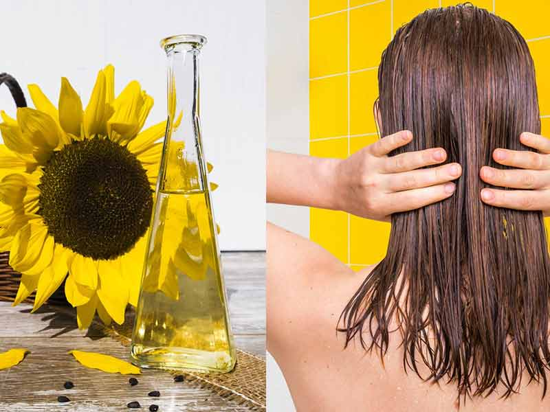 How To Make The Best Use Of Sunflower Oil For Hair?