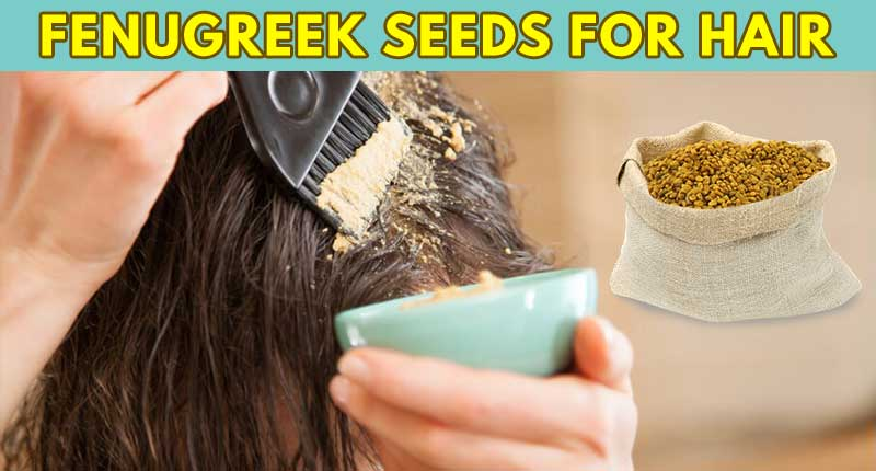 Fenugreek Seeds For Hair - How To Make The Best Use Of It?